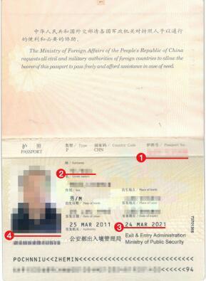 马里签证护照模板